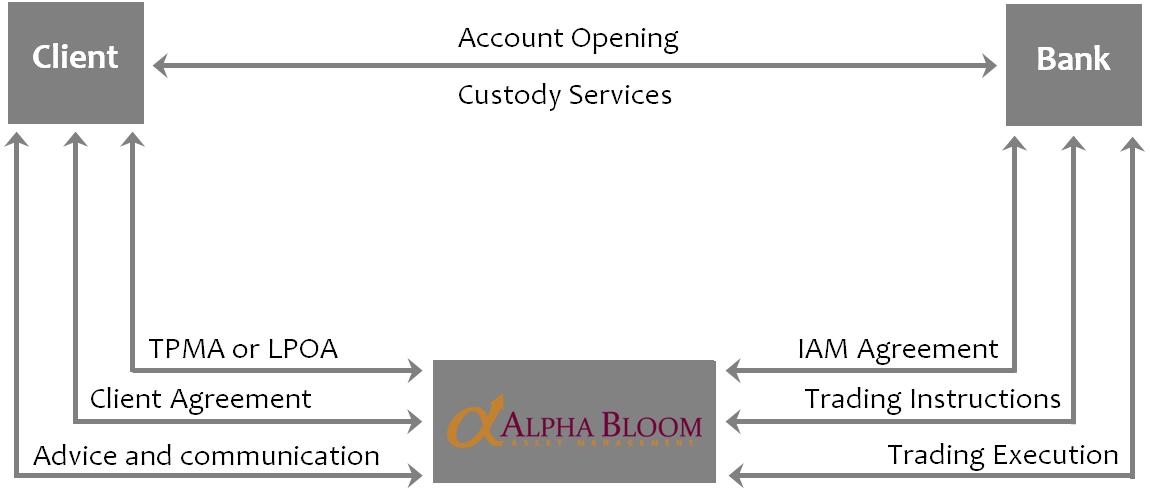 Services – Alpha Bloom Asset Management